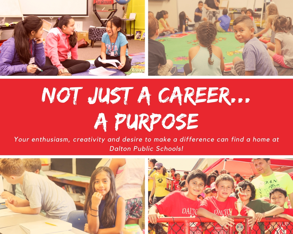 Not Just a Career, A Purpose